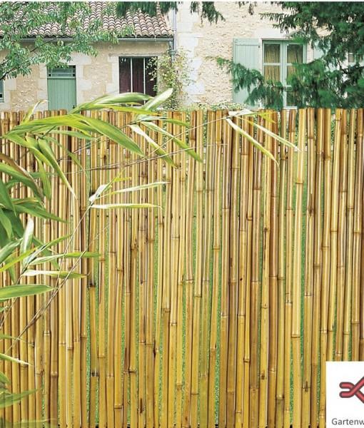 bambus sichtschutz - gartenwebshop.at - Bambus Sichtschutz