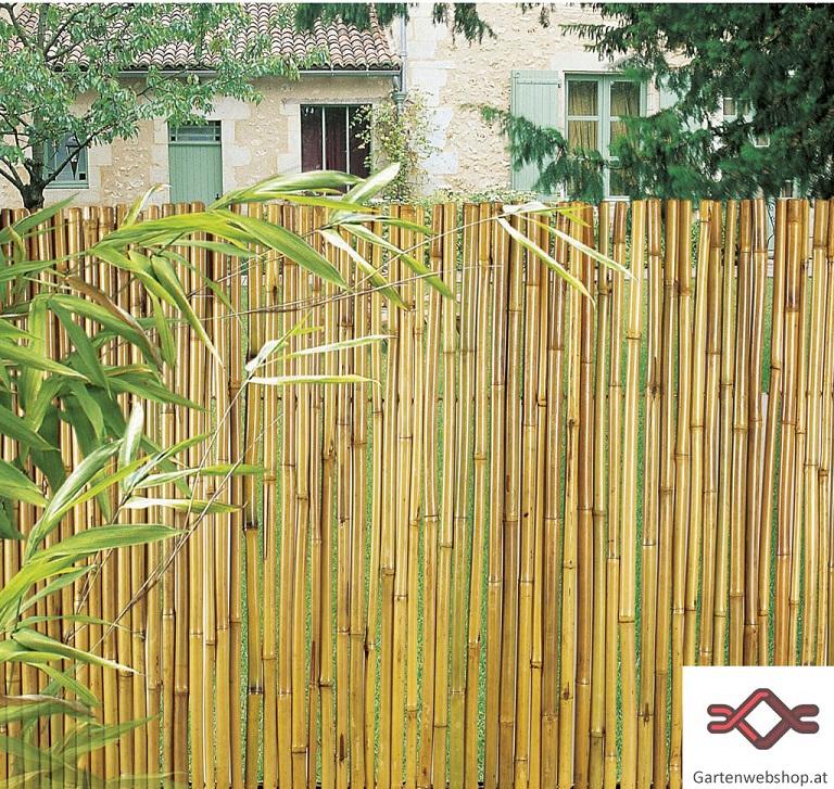 Bambus Sichtschutz - Gartenwebshop.At