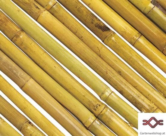Bambus Sichtschutz Gartenwebshop At